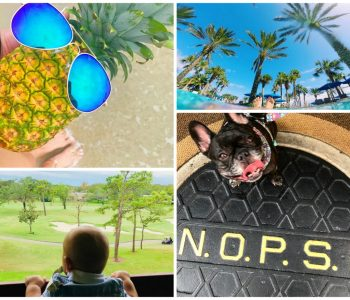 Instagram photos captured at or near Salamander Hotels & Resorts properties.